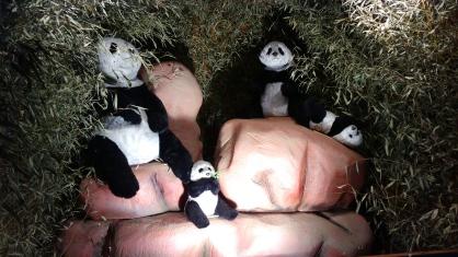 village-de-noel-les-pandas